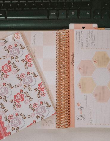 Organizando… ou melhor, tentando me organizar.